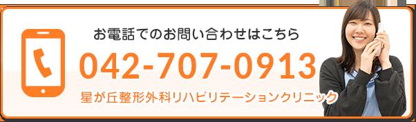 電話番号:042-707-0913